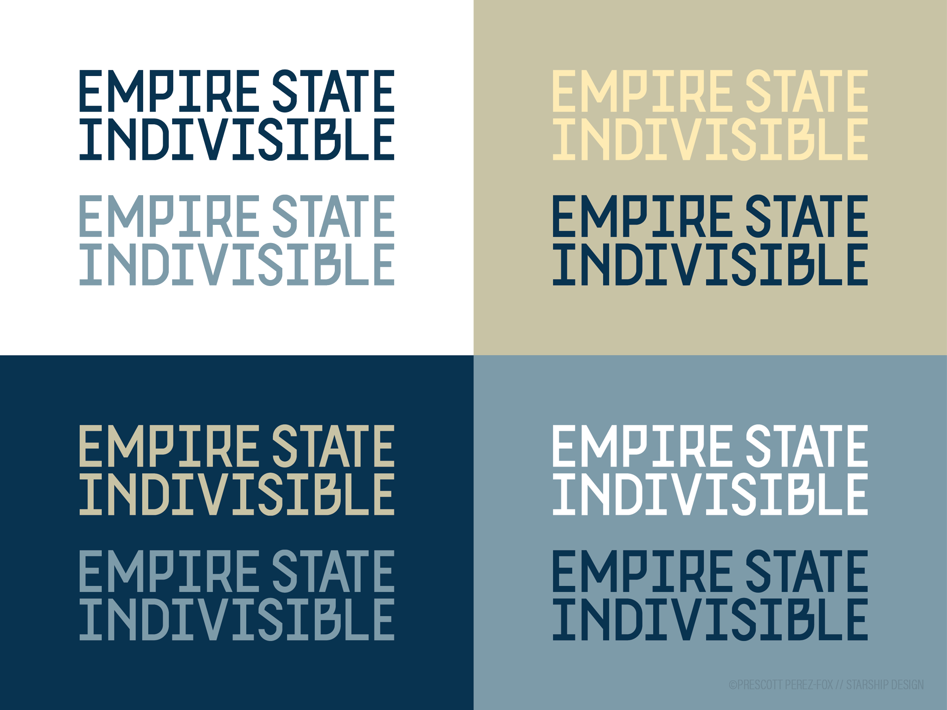 Empire State Indivisible logo system 2