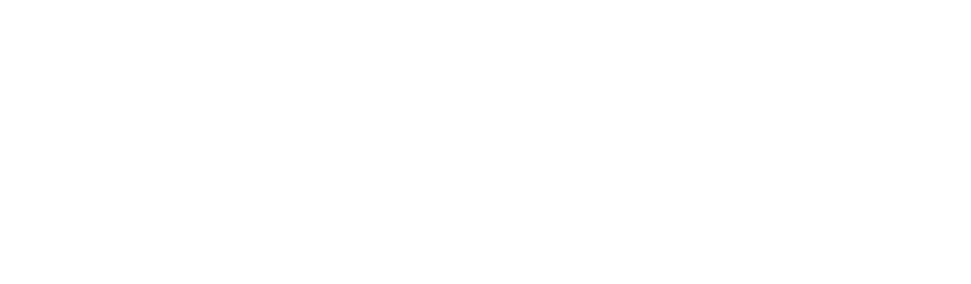 Empire State Indivisible logo